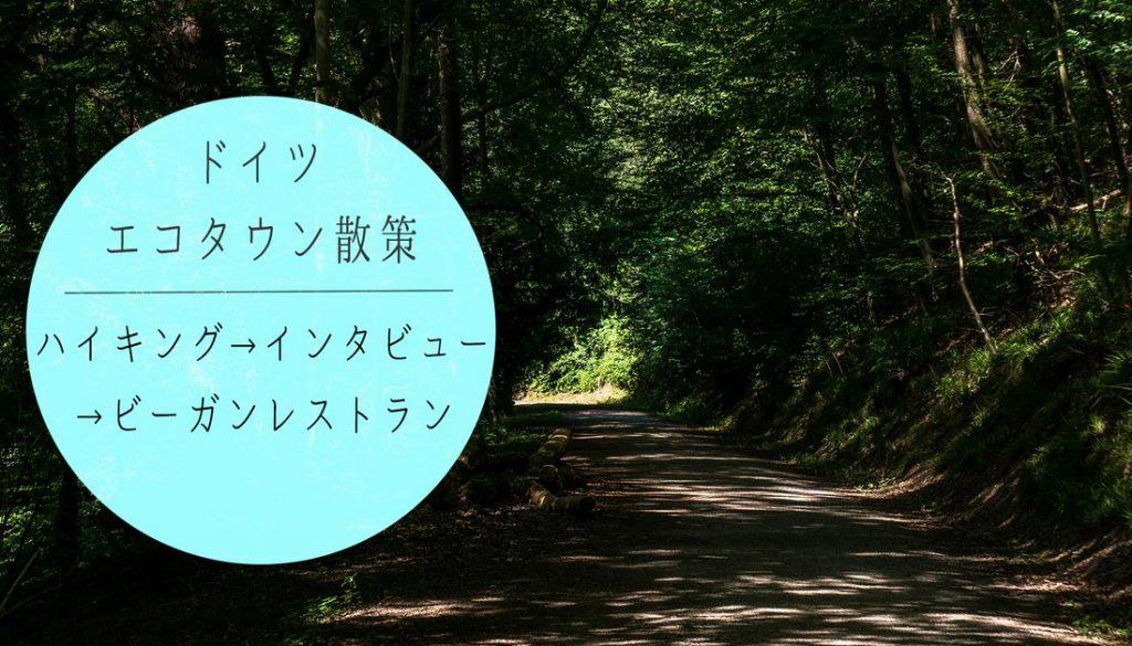 ドイツ随一のエコタウン☆5日目 早朝ハイキング→インタビュー→ビーガンレストラン